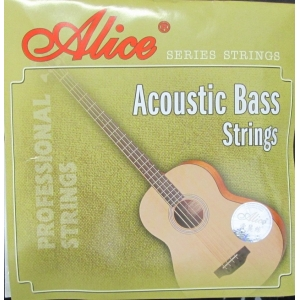 SET COMPLETO PER BASSO ACUSTICO STRING LIGHT A616L