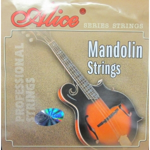 SET COMPLETO PER MANDOLINO LIGHT AM05