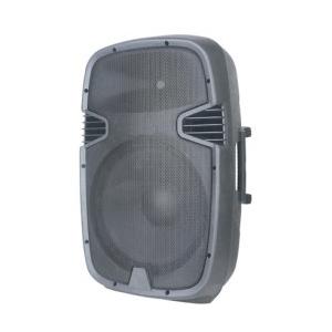 Speaker Attivo A 2 Vie 12...