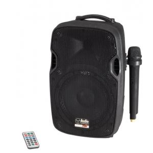 PAX 8W/L cassa attiva con microfoni AUDIODESIGNPRO