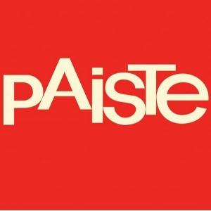 "PST5 PAISTE SPLASH 5"""
