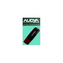 Pen drive & Usb sd card reader