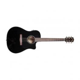 Elettro Acustick Guitars